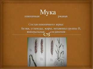 пшеничная ржаная Состав пшеничного зерна: Белки, углеводы, жиры, витамины гр