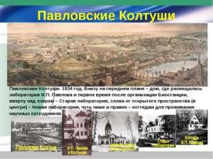 Павловские Колтуши Павловские Колтуши. 1934 год. Внизу на переднем плане – до