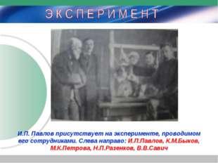И.П. Павлов присутствует на эксперименте, проводимом его сотрудниками. Слева