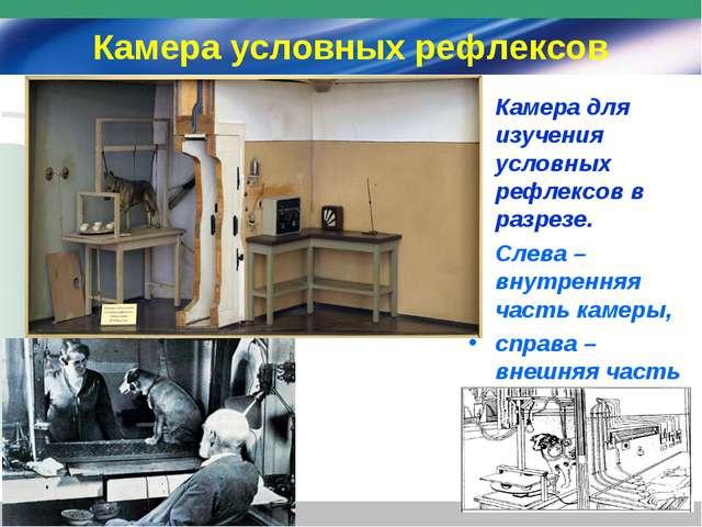 Камера условных рефлексов Камера для изучения условных рефлексов в разрезе. С...
