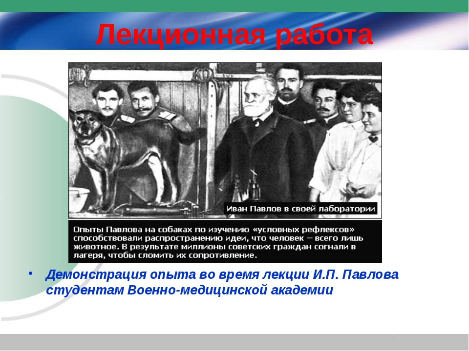 Лекционная работа Демонстрация опыта во время лекции И.П. Павлова студентам В...