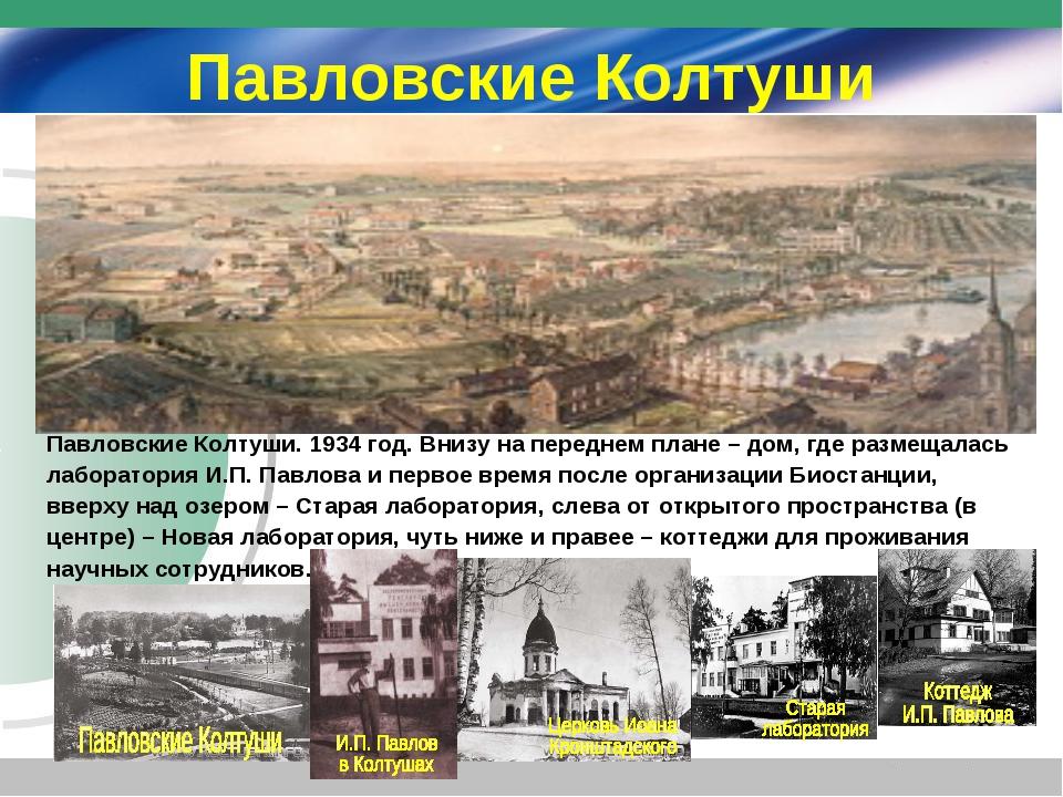 Павловские Колтуши Павловские Колтуши. 1934 год. Внизу на переднем плане – до...