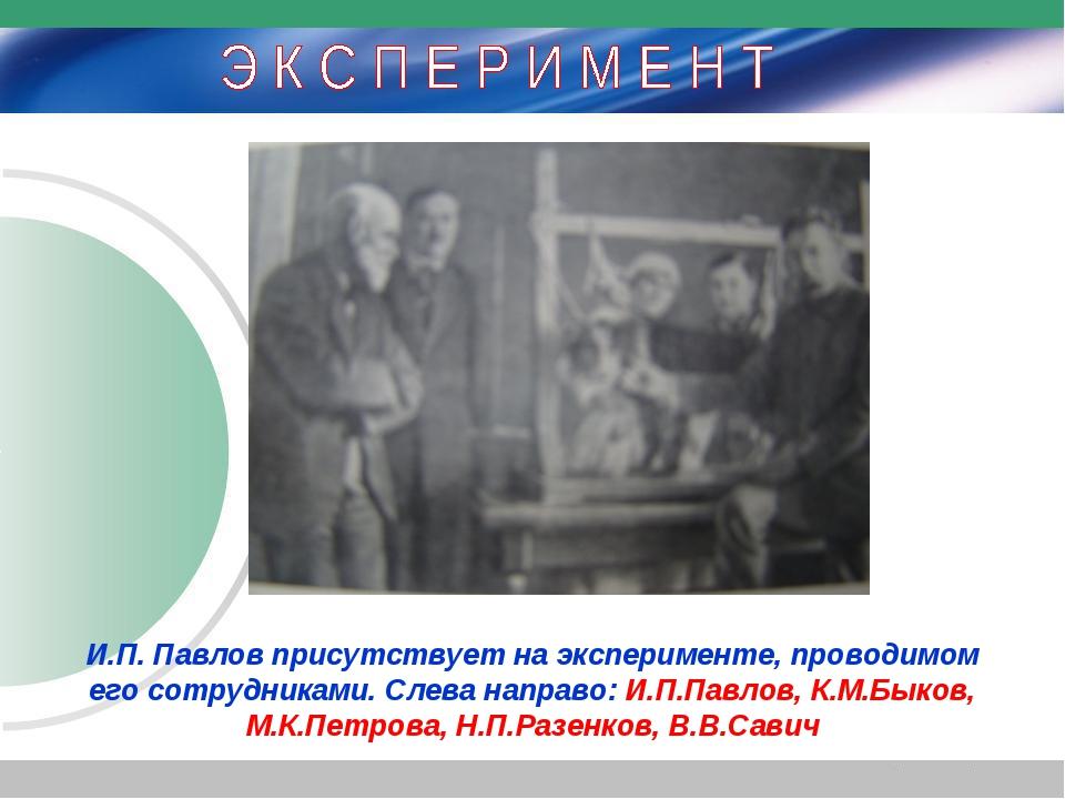 И.П. Павлов присутствует на эксперименте, проводимом его сотрудниками. Слева...