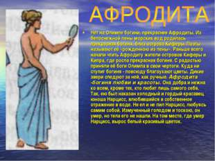 Нет на Олимпе богини, прекраснее Афродиты. Из белоснежной пены морских вод ро