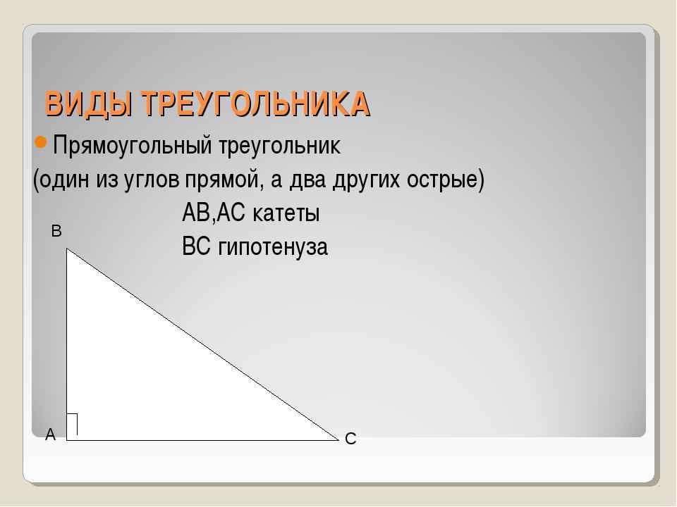 ВИДЫ ТРЕУГОЛЬНИКА Прямоугольный треугольник (один из углов прямой, а два друг...