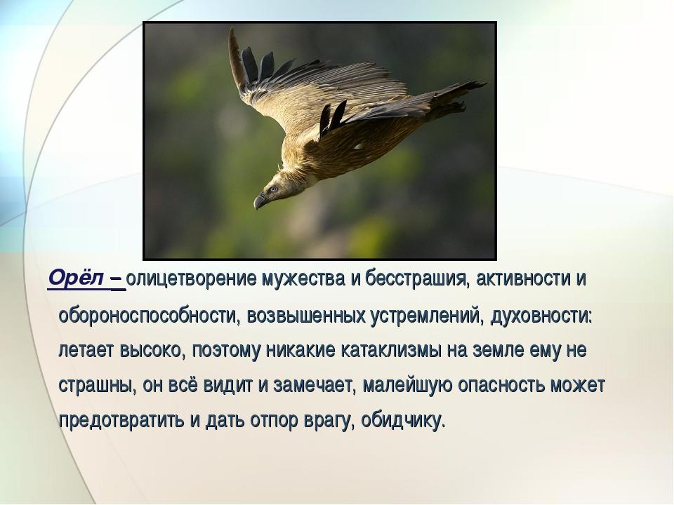 Орёл – олицетворение мужества и бесстрашия, активности и обороноспособности,...