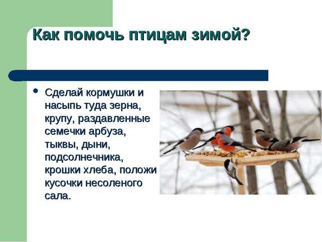 Как помочь птицам зимой? Сделай кормушки и насыпь туда зерна, крупу, раздавле...