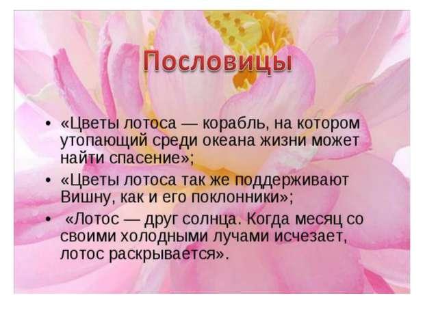 В даль дорога лентой вьётся и блестит роса, и румянцем отзовётся, лотоса краса.