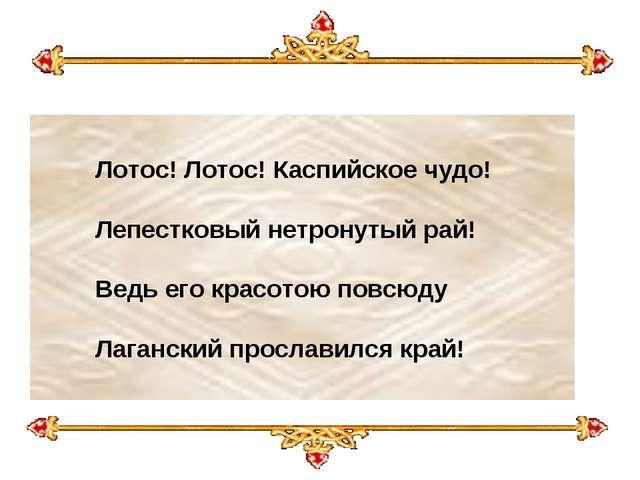 Лотос! Лотос! Каспийское чудо! Лепестковый нетронутый рай! Ведь его крас...