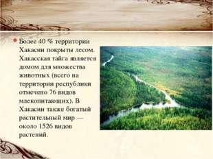 Более 40 % территории Хакасии покрыты лесом. Хакасская тайга является домом д