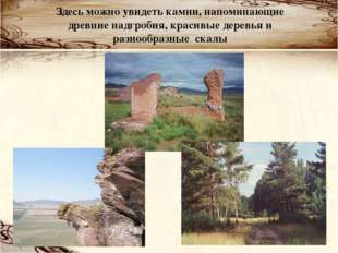 Здесь можно увидеть камни, напоминающие древние надгробия, красивые деревья и