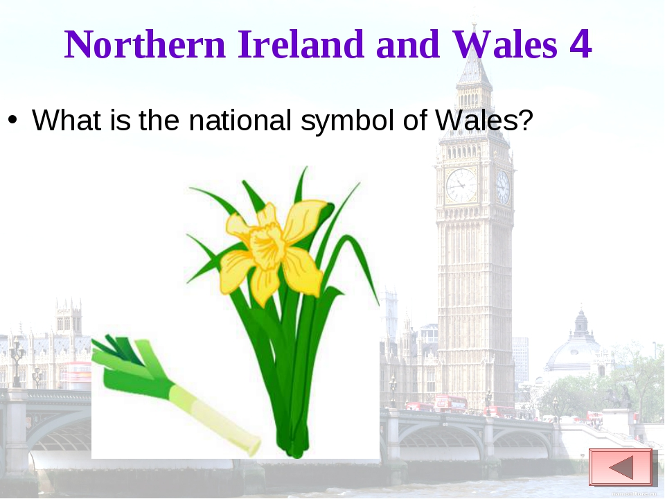 Northern Ireland and Wales 4 What is the national symbol of Wales?