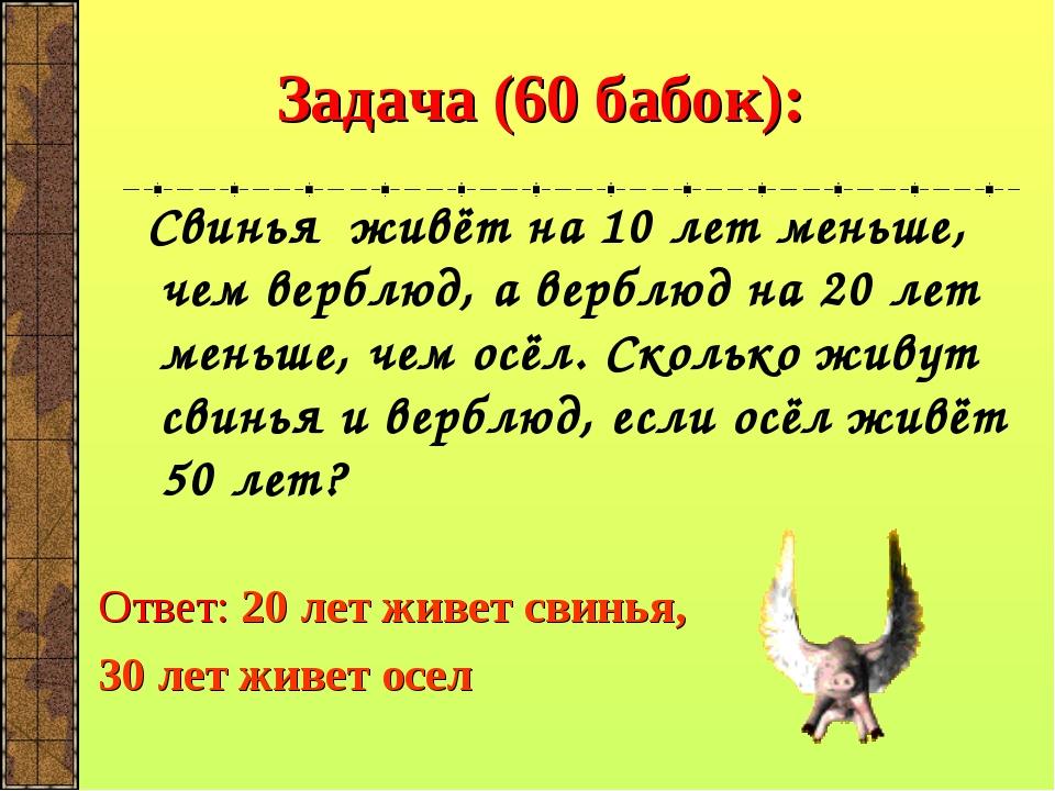 Задача (60 бабок): Свинья живёт на 10 лет меньше, чем верблюд, а верблюд на...