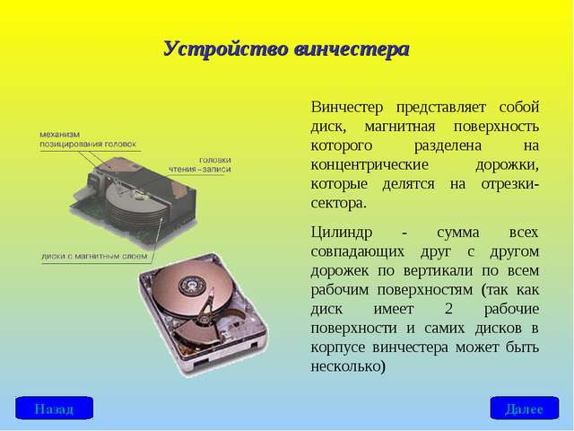 Винчестер представляет собой диск, магнитная поверхность которого разделена н...
