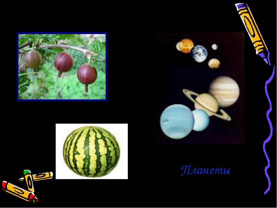 Форма шара в природе Ягоды Планеты