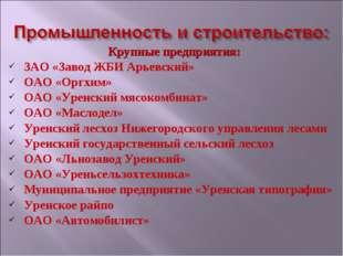 Крупные предприятия: ЗАО «Завод ЖБИ Арьевский» ОАО «Оргхим» ОАО «Уренский мяс