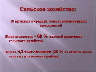 20 крупных и средних сельскохозяйственных предприятий Животноводство - 60 %