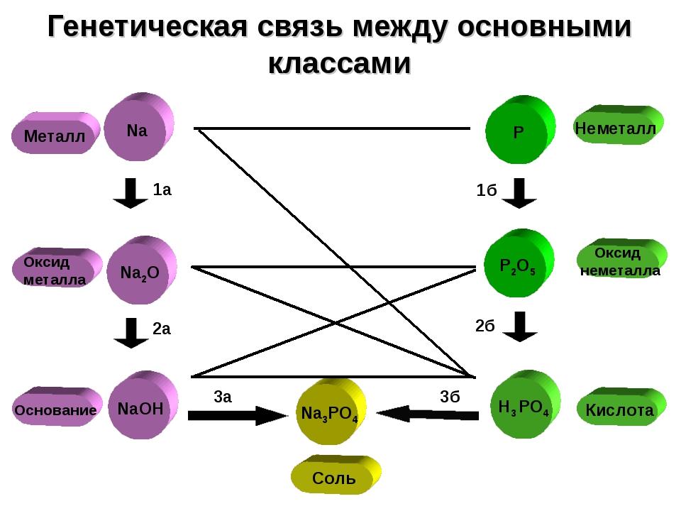 Оксид металла Металл Генетическая связь между основными классами P P2O5 H3 PO...