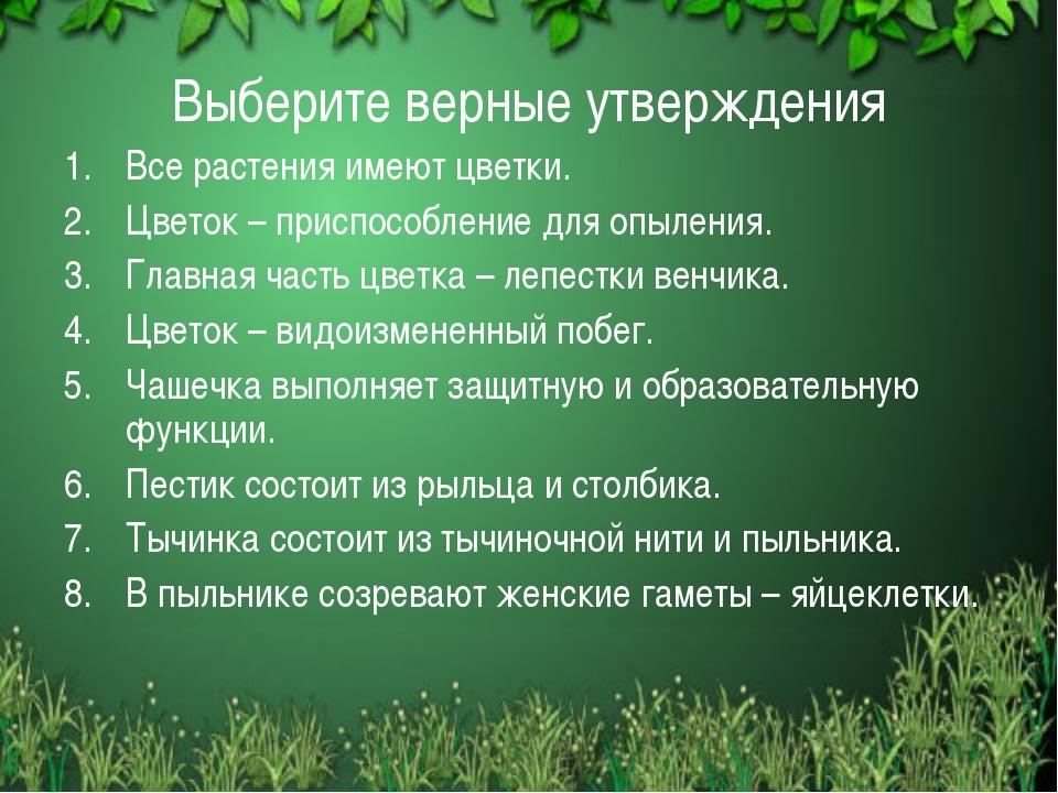 Выберите верные утверждения Все растения имеют цветки. Цветок – приспособлени...