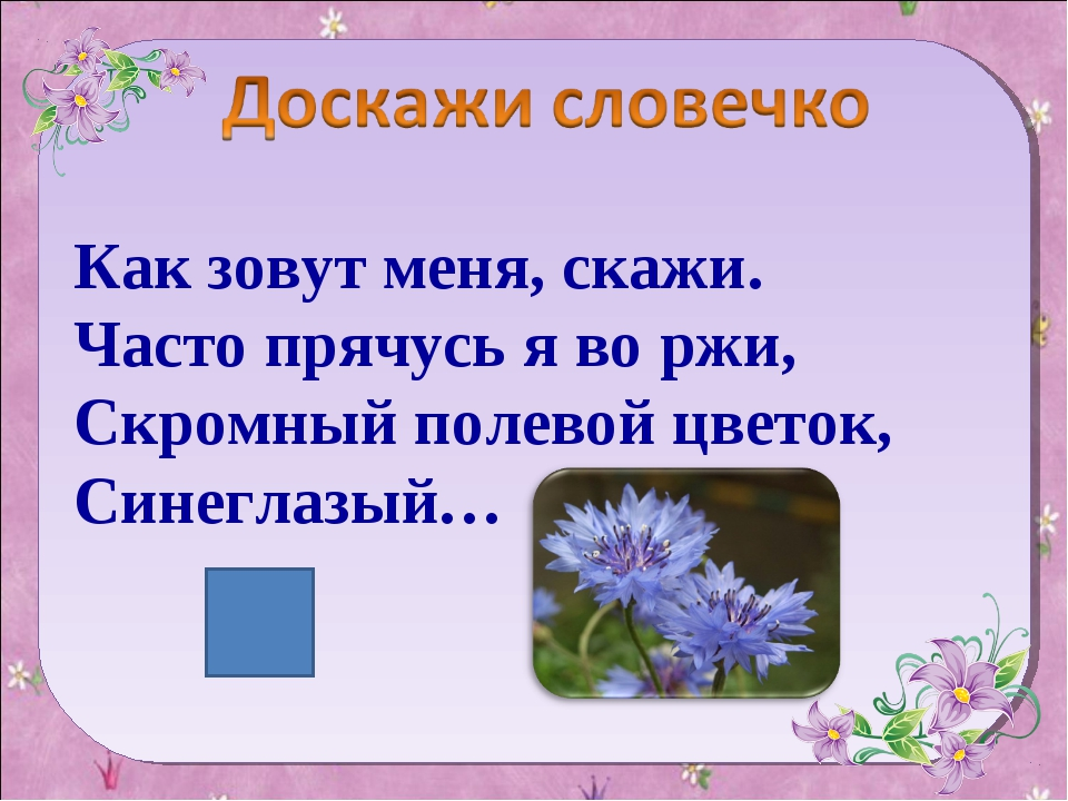 Как зовут меня, скажи. Часто прячусь я во ржи, Скромный полевой цветок, Синег...