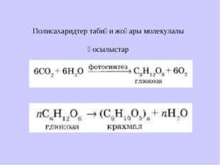 Полисахаридтер табиғи жоғары молекулалы қосылыстар