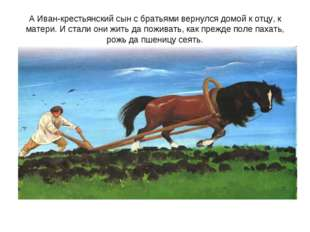 А Иван-крестьянский сын с братьями вернулся домой к отцу, к матери. И стали о
