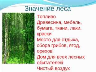 Значение леса Топливо Древесина, мебель, бумага, ткани, лаки, краски Место дл