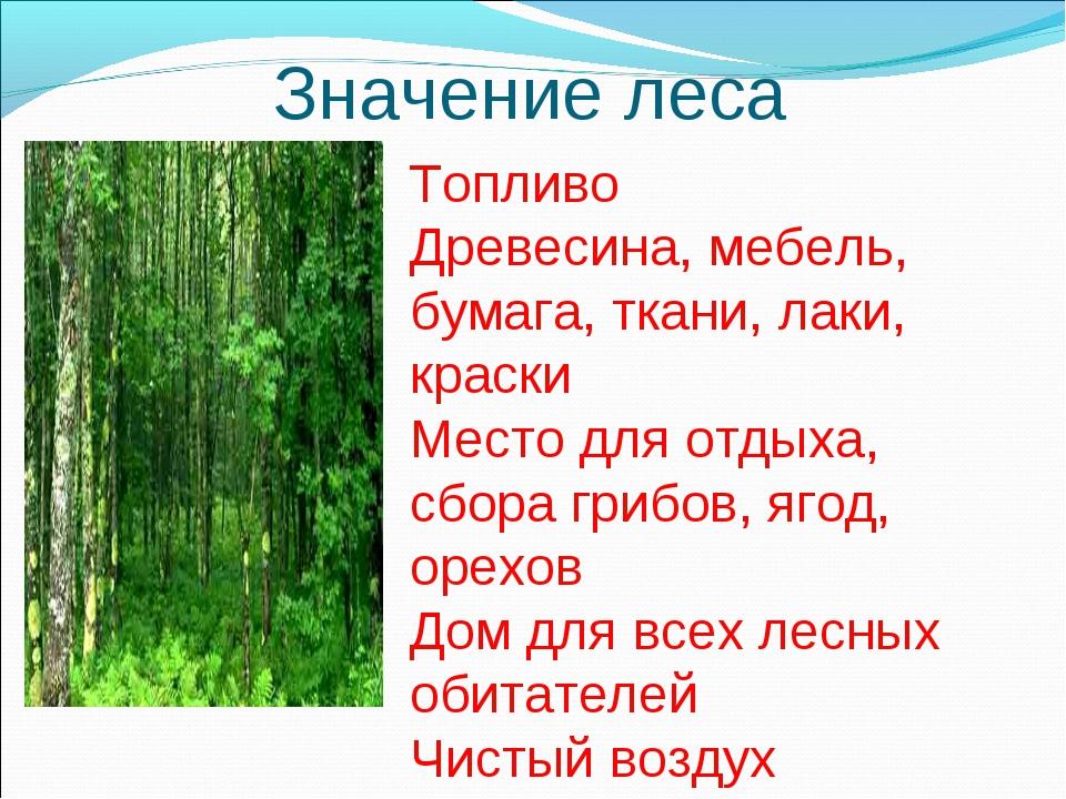 Значение леса Топливо Древесина, мебель, бумага, ткани, лаки, краски Место дл...