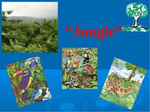 """""""Jungle"""""""