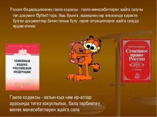 Россия Федерациясенең гаилә кодексы - гаилә мөнәсәбәтләрен җайга салучы төп