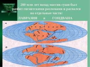 200 млн лет назад массив суши был разбит гигантскими разломами и распался на
