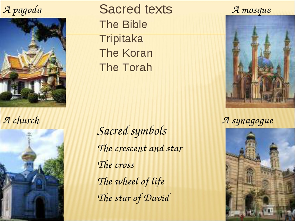 Sacred texts The Bible Tripitaka The Koran The Torah A church A pagoda A mosq...