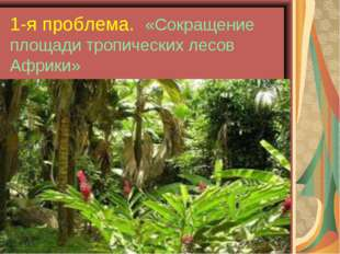 1-я проблема. «Сокращение площади тропических лесов Африки»