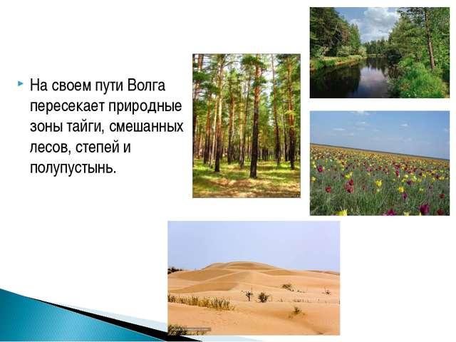 На своем пути Волга пересекает природные зоны тайги, смешанных лесов, степей...