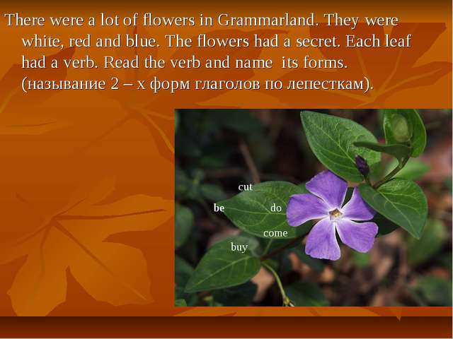 There were a lot of flowers in Grammarland. They were white, red and blue. Th...