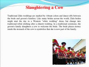 Slaughtering a Cow Traditional Zulu weddings are marked by vibrant colors and