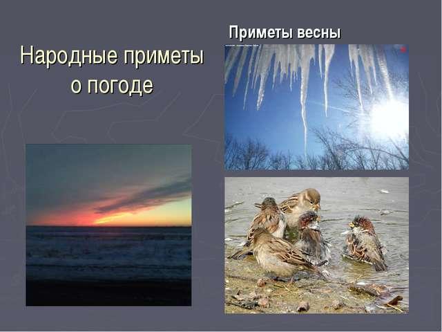 Народные приметы о погоде Приметы весны