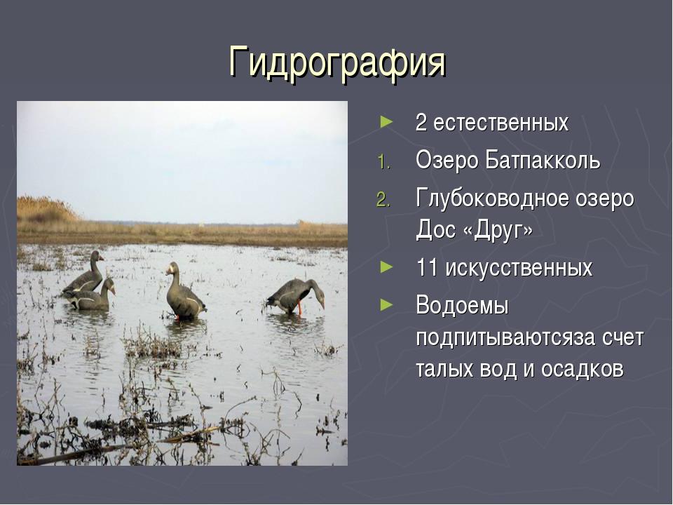 Гидрография 2 естественных Озеро Батпакколь Глубоководное озеро Дос «Друг» 11...
