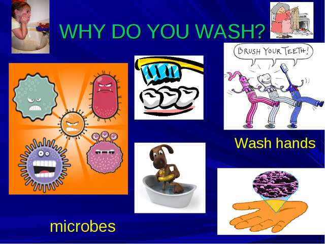 WHY DO YOU WASH? microbes Wash hands