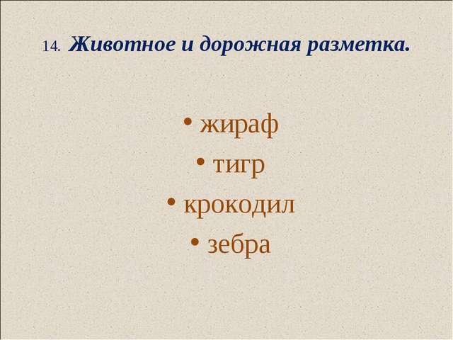 14. Животное и дорожная разметка.