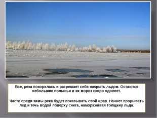Все, река покорилась и разрешает себя накрыть льдом. Остаются небольшие полын