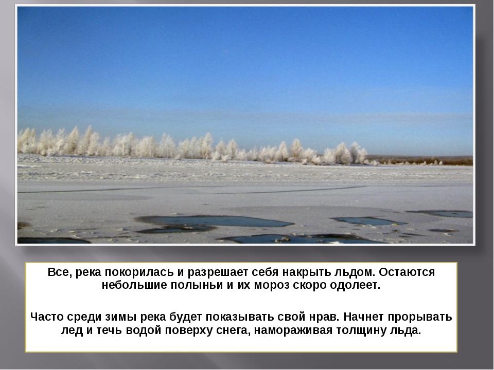 Все, река покорилась и разрешает себя накрыть льдом. Остаются небольшие полын...