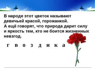 В народе этот цветок называют девичьей красой, горожанкой. А ещё говорят, что