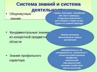 Система знаний и система деятельности Общенаучные знания Фундаментальные зна