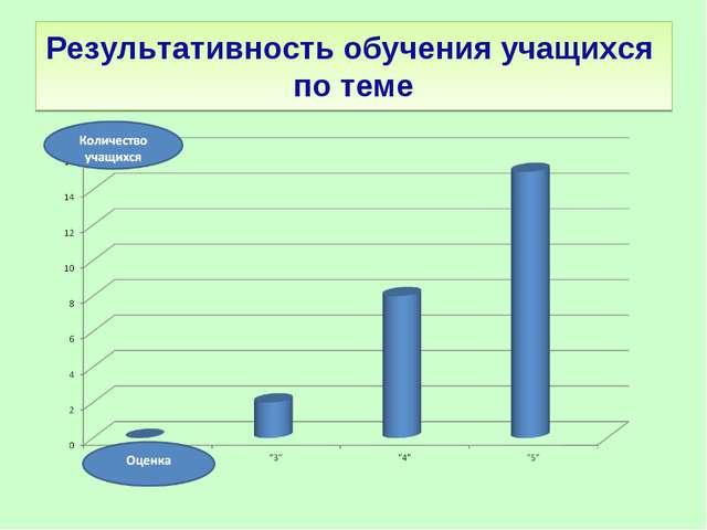Результативность обучения учащихся по теме