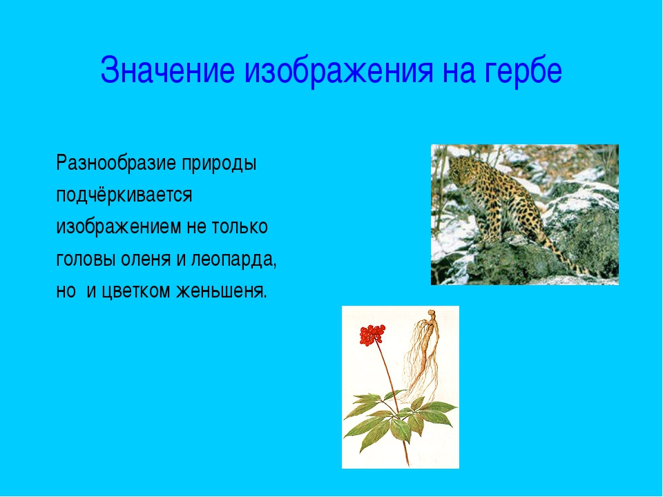 Значение изображения на гербе Разнообразие природы подчёркивается изображение...