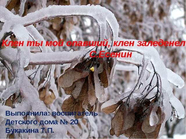 Клен ты мой опавший, клен заледенелый С.Есенин Выполнила: воспитатель Детског...
