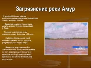 Загрязнение реки Амур 13 ноября 2005 года в Китае произошла серия взрывов на