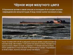 Чёрное море мазутного цвета Утром 12 ноября 2007 в 04.45 на рейдовой стоянке