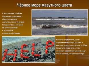 Чёрное море мазутного цвета В воскресенье в районе Керченского пролива в обще